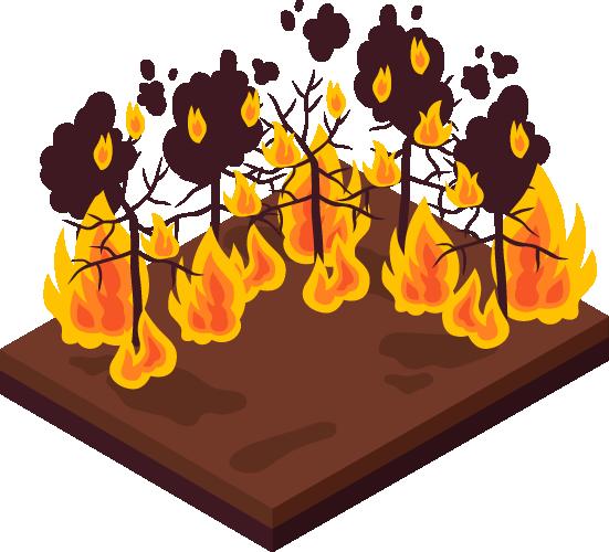 tips-incendios-cobertura-vegetal-contactar