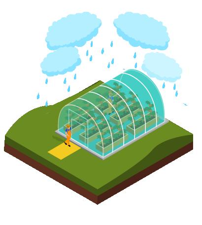 icono tips agroclimaticos lluvias-02